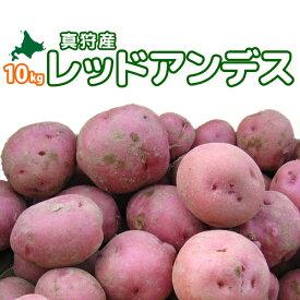 [2019年秋収穫 レッドアンデス 10kg] 北海道真狩産じゃがいも「レッドアンデス」ジャガイモ