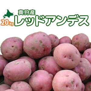 [2019年秋収穫 レッドアンデス 20kg] 北海道真狩産じゃがいも「レッドアンデス」 新じゃがいも ジャガイモ 新じゃが 新ジャガ【どさんこ問屋】