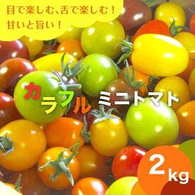 【7月15日頃から発送】宝石箱のようなカラフルトマトセット(2kg)北海道産【送料無料】