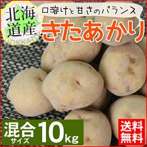 【送料無料】 北海道産 きたあかり 10kg サイズLM混載 新じゃが ほくほく 【農家直送】 じゃがいも お取り寄せ ギフト