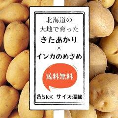 【送料無料】北海道産きたあかりインカのめざめ各5kgサイズLM混載新じゃが