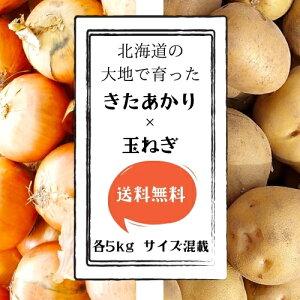 【送料無料】 北海道産 きたあかり・玉ねぎセット 各5kg サイズLM混載 【農家直送】 じゃがいも 新じゃが お取り寄せ ギフト