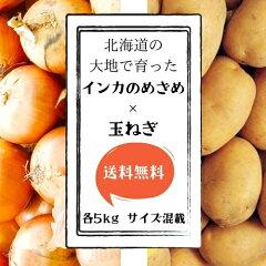 【送料無料】北海道産インカのめざめ玉ねぎ10kgサイズLM混載