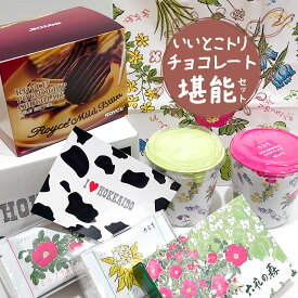 北海道銘菓食べ比べ チョコレート堪能セット いいとこトリ詰め合わせ 六花亭紙袋付き 送料込