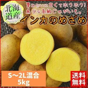 予約受付中 【送料無料】 北海道産 インカのめざめ 新じゃが 5kg (S〜2L混合) ほくほく 期間限定 【農家直送】 常温便 お取り寄せ 贈り物
