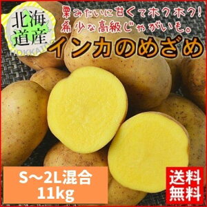 予約受付中 【送料無料】 北海道産 インカのめざめ 新じゃが 11kg (S〜2L混合) ほくほく 期間限定 【農家直送】 常温便 お取り寄せ 贈り物