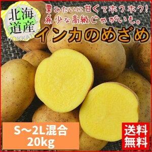 【送料無料】 北海道産 インカのめざめ 越冬 20kg (S〜2L混合) ほくほく【農家直送】 常温便 お取り寄せ 贈り物