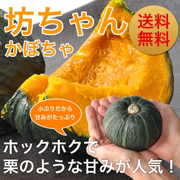 【メディアで話題】北海道産 坊ちゃんかぼちゃ3kg(5〜8玉) 有機栽培 送料無料【九州・沖縄を除く】9月上旬から順次お届け予定カボチャ 南瓜 パンプキン かぼちゃ 北海道 かぼちゃ 送料無料 かぼちゃ ハロウィン