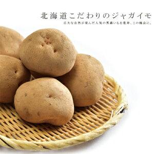 【富良野産】新ジャガイモ「男爵」10kgMサイズ正規品 送料無料【九州・沖縄を除く】北海道 富良野産 じゃがいも 送料無料 10kg じゃがいも 北海道 新じゃが 新ジャガ 男爵芋 男爵いも 男爵