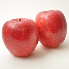 北海道 余市産 りんご【ひめかみ】5kg有機質肥料使用 産地直送※送料無料【九州・沖縄を除く】※10月中旬より発送予定りんご 送料無料 りんご 5kg 北海道 りんご 余市 りんご 希少 リンゴ 林檎 葉とらずリンゴ りんご ギフト 贈答品