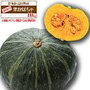 楽天市場 かぼちゃ 人気ランキング1位 売れ筋商品