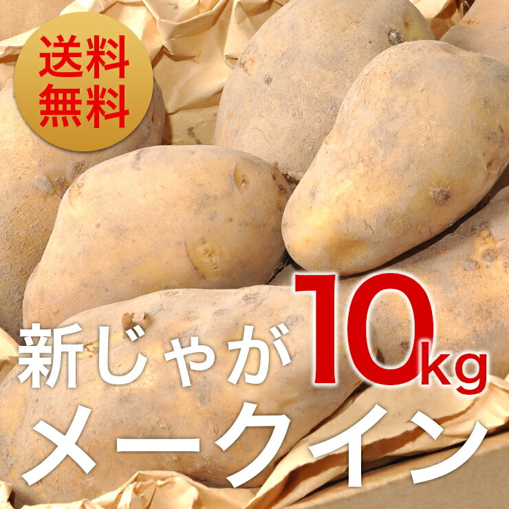 【訳あり】新じゃがいも「メークイン」10kg(送料無料)北海道栗山町「湯地の丘自然農園」直送 北海道 ジャガイモ 10kg 送料無料 じゃがいも 北海道 新じゃが 新ジャガ メークィーン馬鈴薯 芋 贈答品 ギフト 業務用