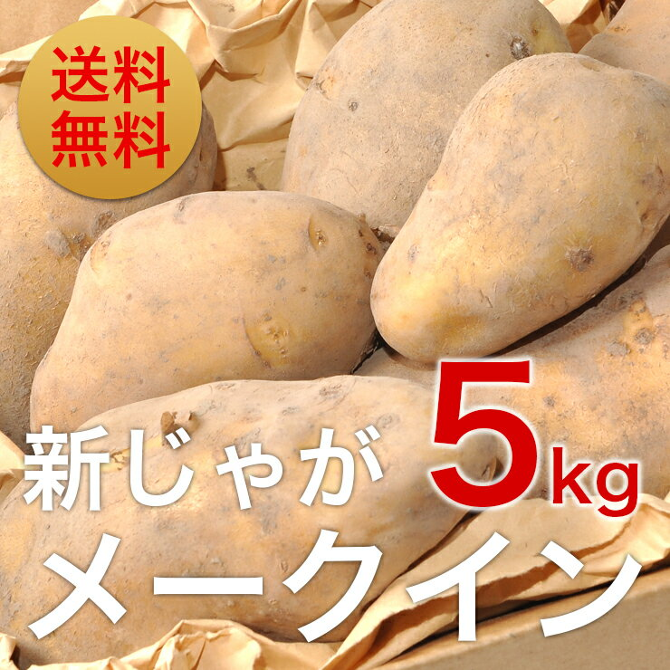 【訳あり】新じゃがいも「メークイン」5kg(送料無料)北海道栗山町「湯地の丘自然農園」直送 北海道 ジャガイモ 5kg 送料無料 じゃがいも 北海道 新じゃが 新ジャガ メークィーン馬鈴薯 芋 贈答品 ギフト 業務用