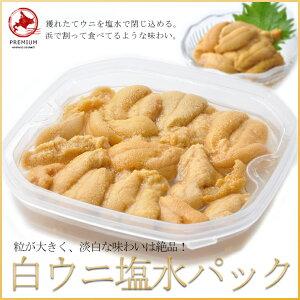 白ウニ塩水パック小樽産100gキタムササキウニ
