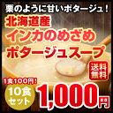 送料無料 1,000円ポッキリ インカのめざめポタージュ 10食セット 北海道 じゃがいも