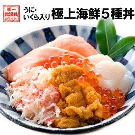 ホワイトデー 海鮮 北海道直送 海鮮丼 5種 無添加うに 北海道産いくら 4食入 個包装 母の日 父の日 ギフト 送料無料