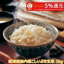 令和元年産 新潟産こしいぶき 5kg 玄米 【送料無料】食味Aランク (ほぼ 無農薬) 一等級 キャッシュレス・消費者還元…