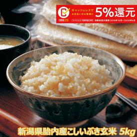令和元年産 新潟産こしいぶき 5kg 玄米 【送料無料】食味Aランク (ほぼ 無農薬) 一等級 キャッシュレス・消費者還元事業 5%キャッシュバック