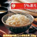 令和元年産 新米 新潟産こしいぶき 10kg 玄米 送料無料 食味Aランク (ほぼ 無農薬) 一等級 キャッシュレス・消費者還…