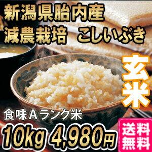 29年産 新米 新潟産こしいぶき 10kg 玄米 送料無料 食味Aランク (ほぼ 無農薬) 一等級