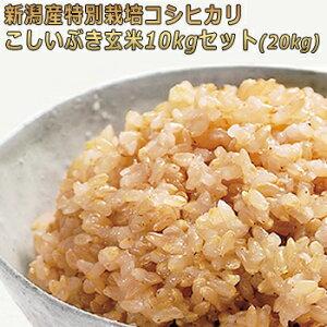 新米 令和2年産 新潟産特別栽培米 玄米 コシヒカリ・こしいぶきセット 10kg×2(20kg) 農薬節減(7割減) 有機肥料栽培米・残留農薬ゼロ(検査済) 詰め合わせセット 一等米 [玄米 お取り寄せ