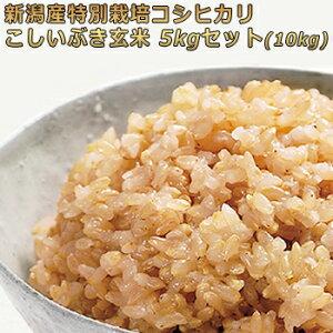 令和2年産 新潟産特別栽培米 コシヒカリ・こしいぶき5kg×2(10kg)玄米セット 詰め合わせセット 一等米 ほぼ 無農薬の[ 玄米 10kg 送料無料]