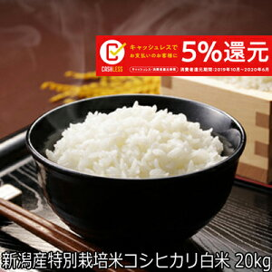 新米 令和元年産 新潟県産 特別栽培米 コシヒカリ白米 20kg (10kg・10kg) 減農栽培(ほぼ 無農薬) 【こしひかり 白米 送料無料】キャッシュレス・消費者還元事業 ご利用金額に対して5%ポイン