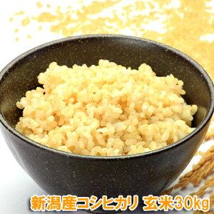 令和元年産 新潟 コシヒカリ 玄米 30kg (10kgの袋3つで発送) 送料無料 新米 魚沼産 以上の美味しさ【産地直送】