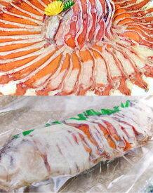 【滋賀県_物産展】子持ち鮒寿司【大】・琵琶湖の名産鮒ずし(ふなずし)産地から直送【クール便送料無料】