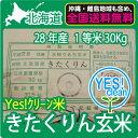 YES!clean 北海道産 きたくりん 玄米 30Kg 送料無料 【28年産】 【1等米】 【北海道米】