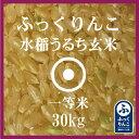 ふっくりんこ 玄米 30Kg 送料無料 産地サミット公認品 1等米 28年産 北海道米 食味ランキング 特A受賞