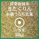 きたくりん 玄米 30Kg 送料無料 農薬節減米 北海道産 1等米 28年産 北海道米