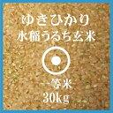ゆきひかり 玄米 30Kg 送料無料 北海道産 一等米 北海道米 29年産
