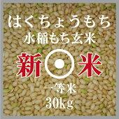 新米はくちょうもち玄米30kg一等米北海道産もち米30年産北海道米