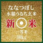 新米ななつぼし玄米30Kg1等米北海道米30年産食味ランキング特A受賞