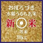 おぼろづき玄米30kg北海道米29年産1等米低アミロース米