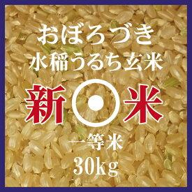 新米 おぼろづき 玄米 30kg 北海道米 30年産 1等米 低アミロース米