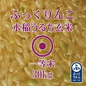 ふっくりんこ玄米30Kg産地サミット品1等米2018年産北海道米
