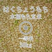 はくちょうもち玄米30kg一等米北海道産もち米30年産北海道米