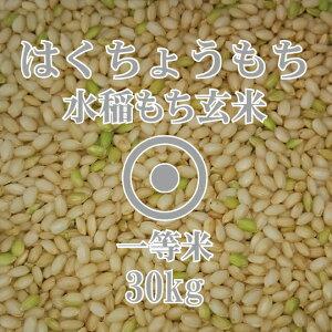 令和2年産 はくちょうもち 玄米 30kg 一等米 北海道産 もち米 糯 北海道米