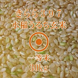 令和元年産 きらら397 玄米 30Kg 北海道産 一等米 北海道米