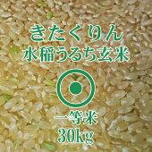 きたくりん玄米30Kg北海道産1等米北海道米