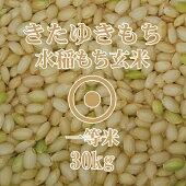 きたゆきもち玄米30Kg一等米北海道産もち米2018年産北海道米
