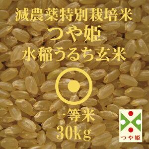 令和元年産 つや姫 玄米 30Kg 減農薬 特別栽培米 山形県産 一等米 やまがた特別栽培農産物認証