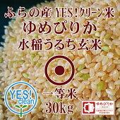 JAふらのゆめぴりか玄米30KgYES!クリーン米第一区分北海道米1等米30年産