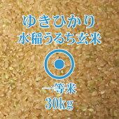 ゆきひかり玄米30Kg北海道産一等米北海道米