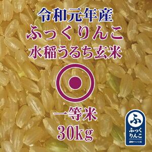 【訳あり米 令和元年産】 ふっくりんこ 玄米 30Kg 産地サミット品 1等米 北海道米 送料無料