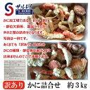 訳あり かに詰合せ 約3kg (毛ガニ・ズワイ・タラバ) 北海道 オホーツク産 サルレイ 沙留漁組 クール便発送 送料無料