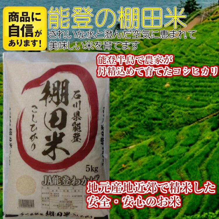 【10月3日より29年度産】【送料無料】石川県産(能登) コシヒカリ 「棚田米」 10kg (5kgx2袋) 【スーパーセール品】北海道・沖縄は別途500円かかります