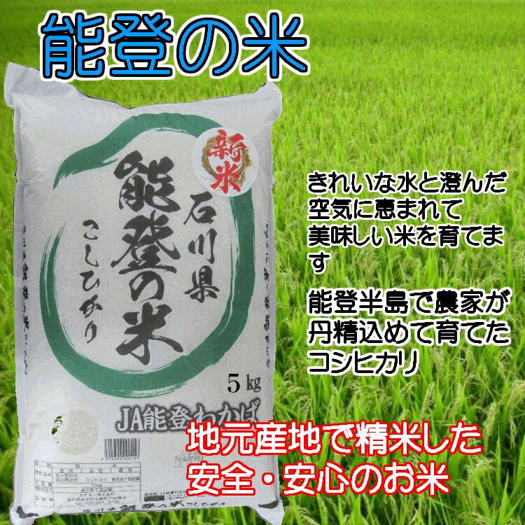 【9月15日より29年度産】石川県産  コシヒカリ  「能登の米」 5kg 【スーパーセール品】
